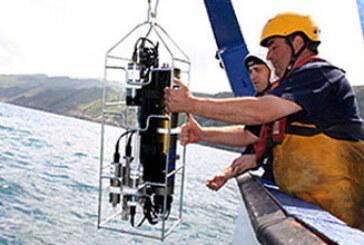 La biomasa de anchoa supera el límite de precaución