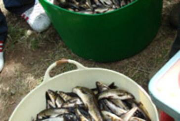 La sociedad «La Venatoria» de Santiago organiza un concurso de pesca en el río Tambre