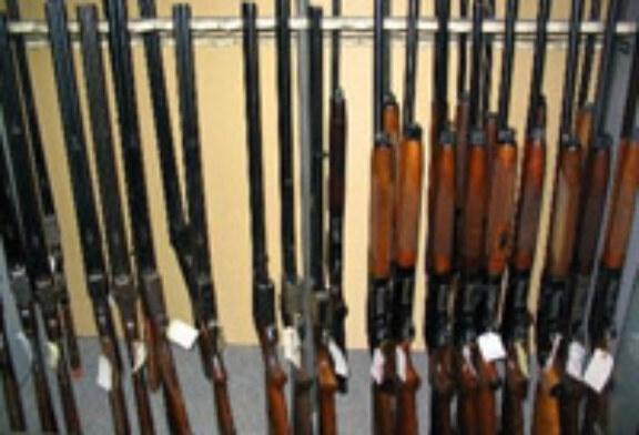 Campaña de recogida de información sobre la renovación y revocación de licencias de armas