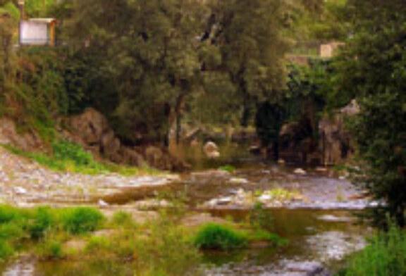 La sociedad Pago-Uso organiza un campeonato local de pesca en el río Arantzazu