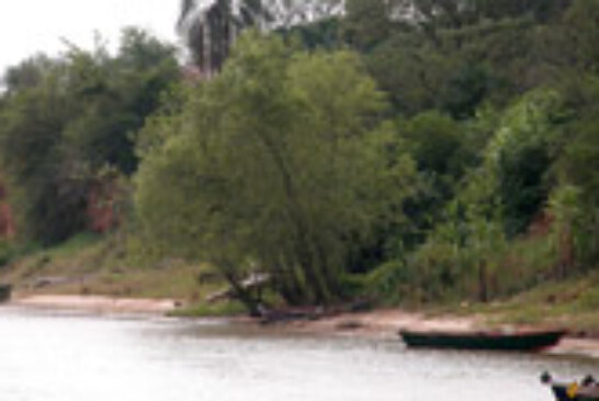 Paraguay y Argentina debaten la aplicación de la veda de pesca durante todo el año