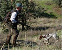Los cazadores navarros ya conocen sus períodos hábiles de caza