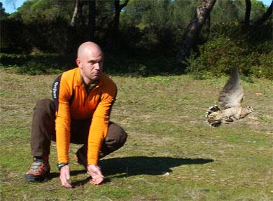 """Resultados positivos del análisis del """"Proyecto Becada"""" en esta primera temporada de caza"""