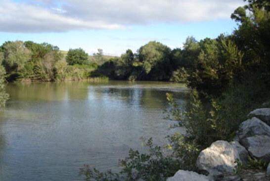 El río Arga celebrará su XIV Concurso de Pesca de Agua Dulce el próximo día 28