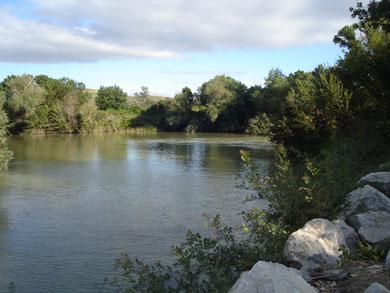Mil voluntarios se implicaron el pasado año para cuidar los ríos de Navarra