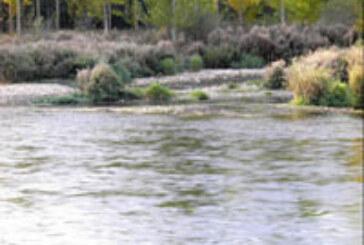 El río ??rbigo y sus truchas esperan la Concentración Nacional de Salmónidos Mosca