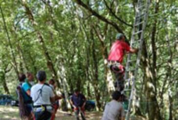 Urtxoaren Lagunak celebró un curso de seguridad en puestos de palomas