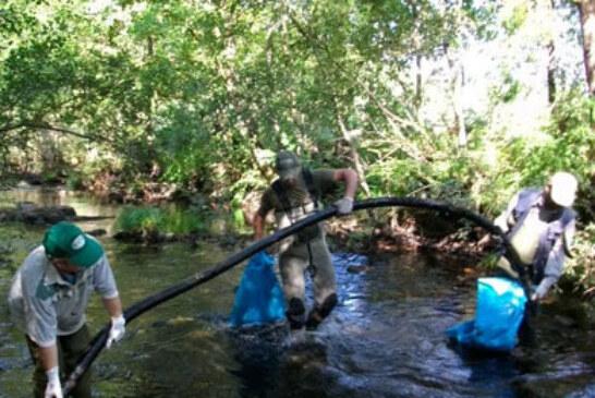 La Asociación de Trucheros río Furelos celebra sus ya conocidas jornadas de limpieza