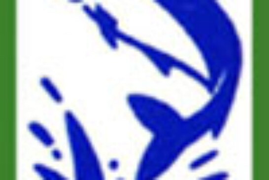 Donosti y Zumaia se dividen las mangas del Campeonato de Mar en la modalidad de Corcheo