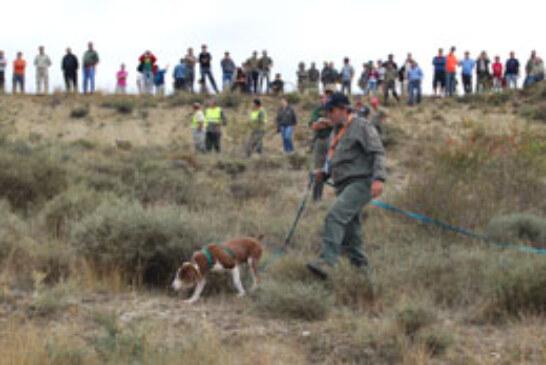 La prueba de perros de rastro sobre jabalí busca a su representante en Álava