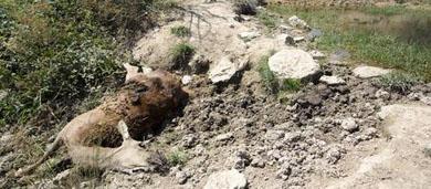 La UNAC pide una mejor gestión de las reservas de caza riojanas