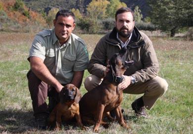 Cursos de rastreo con perros de sangre organizados por AEPES para el 2014