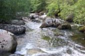 Se archiva la denuncia por el vertido de amoníaco que Froxá realizó en 2008 al río Besaya