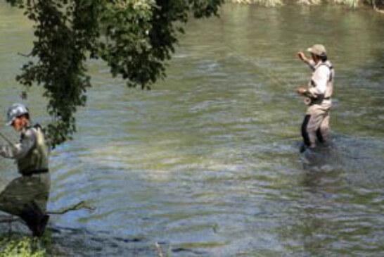 """El curso """"Pesca y Ecosistemas Acuáticos"""" ofrece la posibilidad de iniciarse en este arte"""