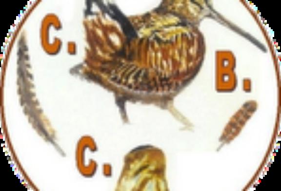 El Club de Cazadores de Becada solicita modificaciones en la normativa de caza de esta especie en Galicia y la Comunidad Valenciana