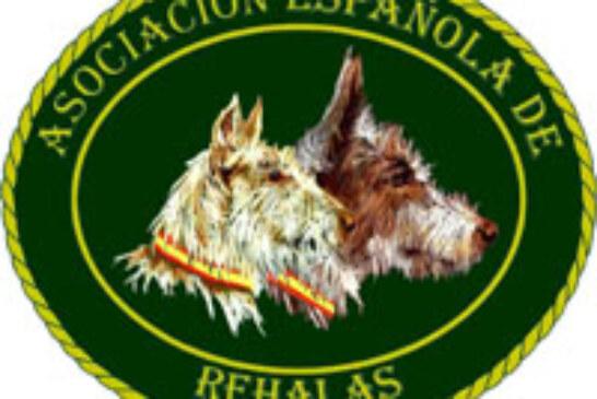 Entrega de premios de la Asociación Española de Rehalas