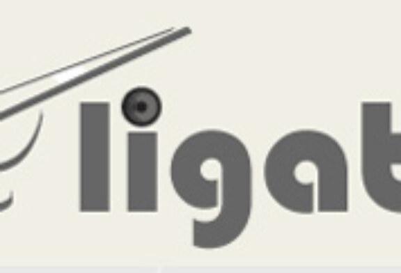 Ligatiro.com comienza su andadura con el propósito de potenciar el Tiro Olímpico