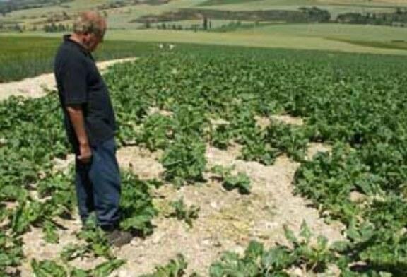 Adecana denuncia que las Sociedades se quedan sin ayuda por daños a la agricultura