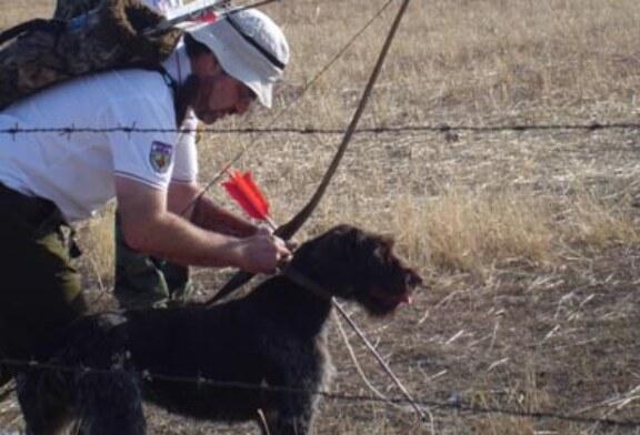 La Escuela de Caza celebrará un curso de iniciación a la caza con arco el 16 de enero