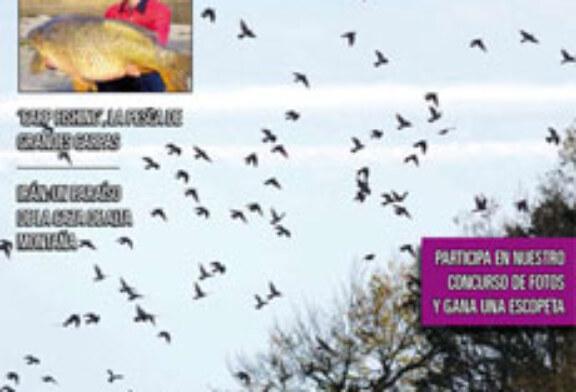 Ya está en la calle el número de diciembre de la revista DESVEDA/ADECAP
