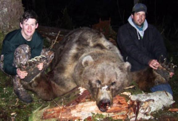 Un oso de 600 kilos sorprende a unos cazadores en Canadá
