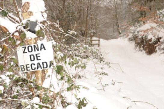 La nieve precipita el fin de campaña