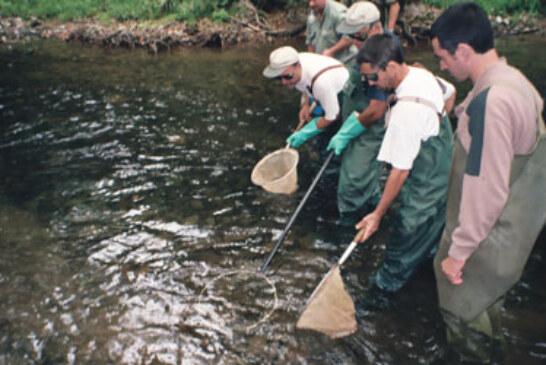 Jornadas sobre pesca sostenible y turismo en los valles pirenaicos