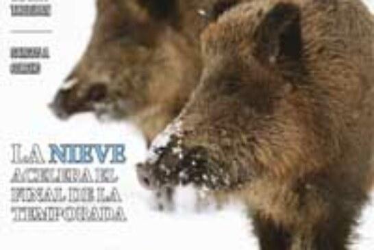 La revista DESVEDA/ADECAP ya está en los quioscos