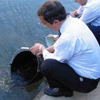 La Diputación repoblará este año con 24.842 truchas y 9.000 salmones los ríos vizcaínos