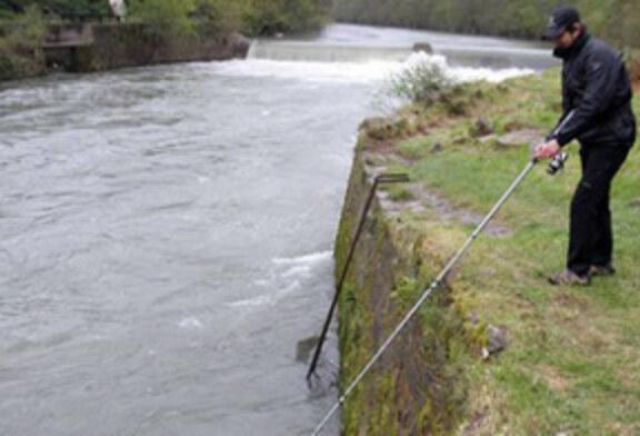 Comienza la temporada de pesca de trucha y salmón en Navarra