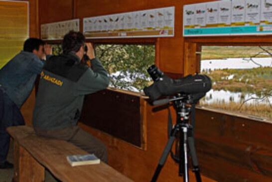 Medio Ambiente invierte en educación ambiental en el Urdaibai Bird Center