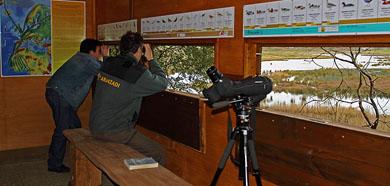 Urdaibai Bird Center y el Parketxea de Gorbeia celebran mañana el Día de los Humedales