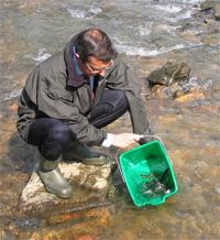 Bizkaia destina 105.000 euros a actividades de conservación de recursos naturales