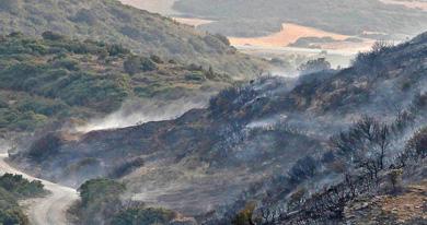 El incendio de Ujué afectó a 237 hectáreas, de las que el 86% eran terreno forestal