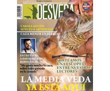 La revista DESVEDA/ADECAP de agosto ya está disponible