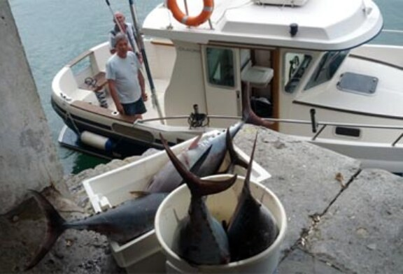La pesca marítima recreativa en Euskadi