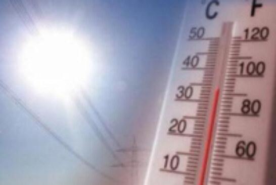 Cómo enfrentarnos al calor