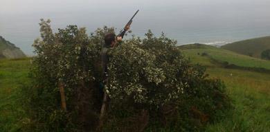 Publicada la orden foral que regulará la caza en Gipuzkoa esta temporada