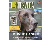 Nuestra revista dedica el mes de enero al mundo canino