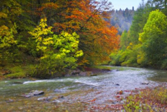 Navarra y el Perigord inician un proyecto para revalorizar los ríos Irati y Dordoña