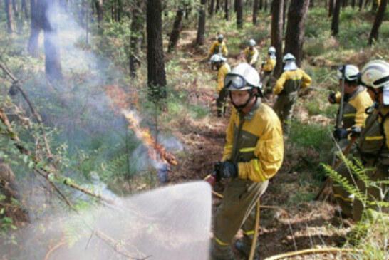Bizkaia a la cola en número de incendios forestales en sus montes en 2012