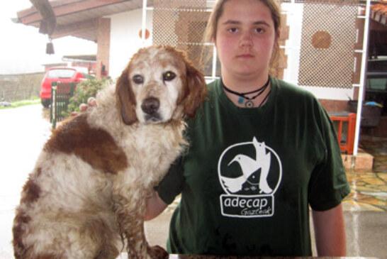 Adecap Gazteak niega rotundamente que los cazadores abandonen a sus perros