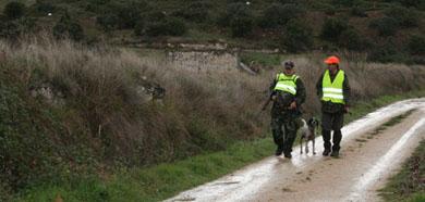 Egaña, Gisasola y Pejenaute representarán a Euskadi y Navarra en la final del campeonato estatal de caza menor con perro