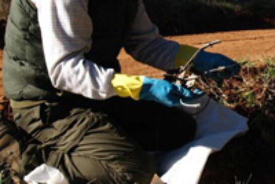Aproca insta a las CCAA aprobar la homologación de los métodos de control de predadores