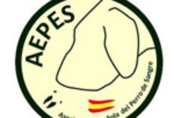 Curso de rastreo con perros de sangre en Madrid