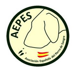 264 intervenciones de AEPES en 2013