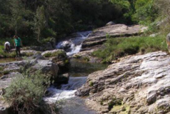 Red Cambera imparte hoy una charla sobre conservación piscícola en los ríos cántabros