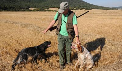 Los cazadores encaran la media veda con el campo 'pelado' por la sequía