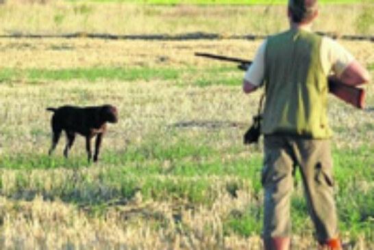 Bizkaia aprobará la Orden Foral de Vedas con novedades en la caza menor y mayor