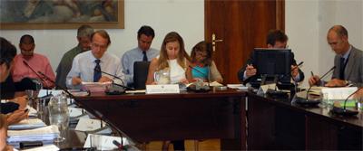 Luz verde al desarrollo de programas de reintroducción de especies silvestres en España